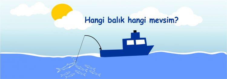 hangi balık hangi mevsimde yenir