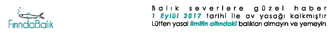 fırında balık logo
